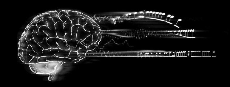 bcmi-brain